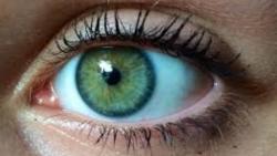 تفسير حلم العيون الخضراء في المنام