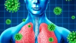 الفرق بين فيروس كورونا والانفلونزا