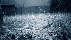 تفسير حلم المطر في المنام لابن سيرين