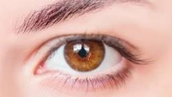 ما يميز اصحاب العيون العسلية