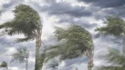 تفسير حلم مواجهة الريح في المنام