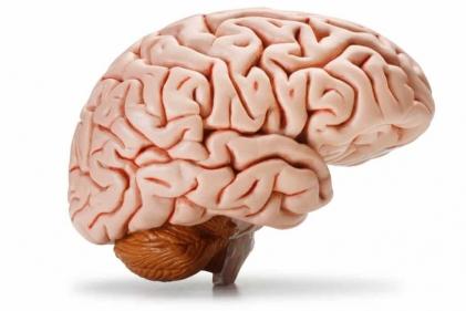 تفسير حلم الدماغ المفتوح في المنام