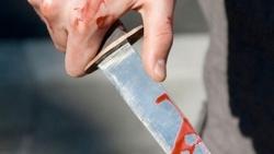 تفسير حلم الذبح بدون دم في المنام