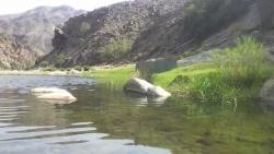 تفسير حلم جريان الماء في الوادي في المنام