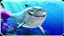 تفسير روية أحلام الأسماك المجمدة