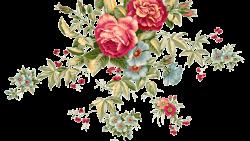 تفسير زراعة الورد في المنام للعزباء