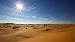 تفسير حلم المشي في الصحراء لابن سيرين