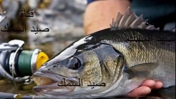 تفسير حلم السمك للمتزوجة في المنام