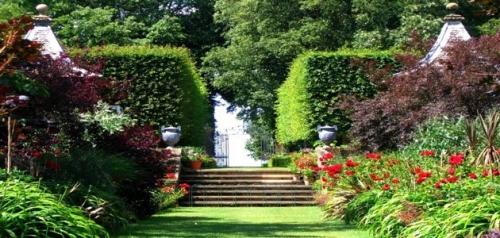 تفسير حلم رؤية الكرميد والحدائق في المنام للعزباء والمتزوجة