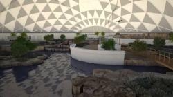 تفسير حلم حديقة المنزل للعزباء في المنام