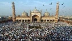 كم عدد المسلمين في أمريكا 2020