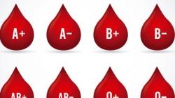 مميزات فصيلة الدم O سالب