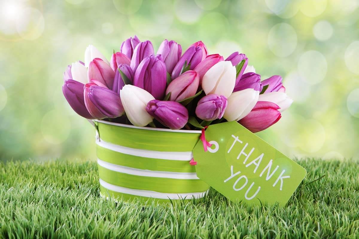 عبارات شكر وتقدير للأصدقاء