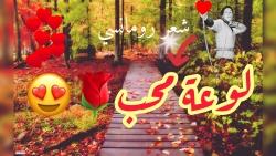 قصيدة أريد سلوكم والقلب يأبى لاحمد شوقي