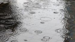 بوستات عن المطر