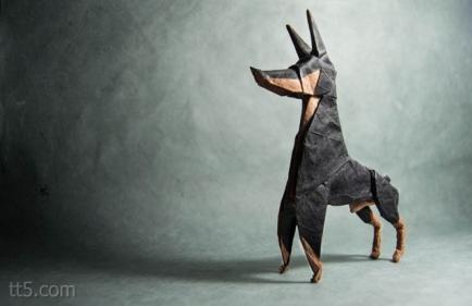 صفات كلب الدوبيرمان Doberman pinscher
