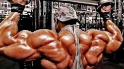 مخاطر حبوب العضلات وكمال االجسام