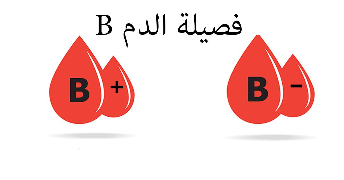 فصيلة دم القرود