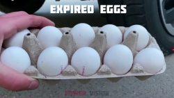 تفسير حلم فقس البيض في المنام