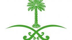 اجمل ما قيل عن الوطن السعودي