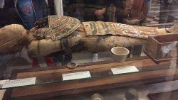 تفسير حلم مقبرة فرعونية في المنام
